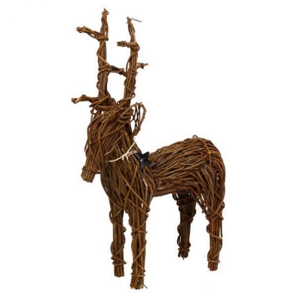 Bocken Rudolph